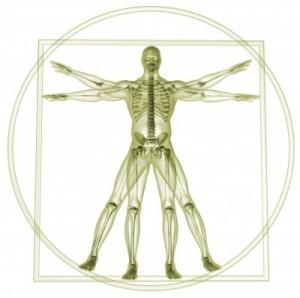 Lekce internetové anatomie