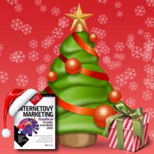 Vánoční Akce - 3x Kniha Internetový Marketing pro Čtenáře Propagace na Internetu